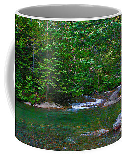 Coffee Mug featuring the photograph Emerald Forest by Adrian LaRoque