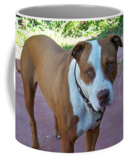 Emma The Pitbull Dog Coffee Mug