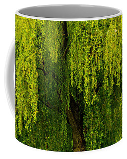 Enchanting Weeping Willow Tree  Coffee Mug