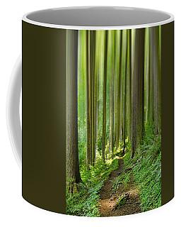 Enchantment Coffee Mug by Don Schwartz