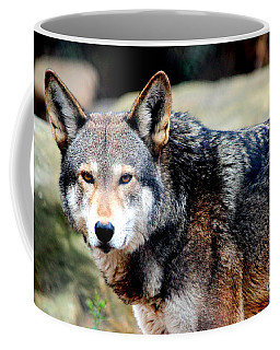 Endangered Red Wolf Coffee Mug