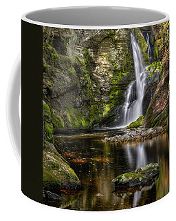 Enders Falls Coffee Mug