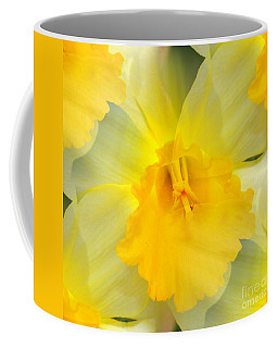 Endless Yellow Daffodil Coffee Mug