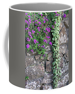 English Garden Wall Coffee Mug