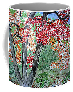 Enjoying Lost Maples Coffee Mug
