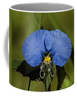 Erect Dayflower  Commelina Erecta Dsmf096 Coffee Mug