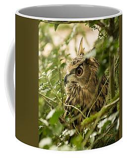 Eurasian Eagle-owl 2 Coffee Mug