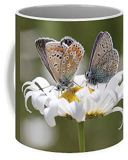 European Common Blue Butterflies Coffee Mug
