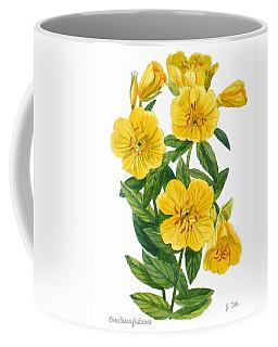 Evening Primrose - Oenothera Fruticosa Coffee Mug