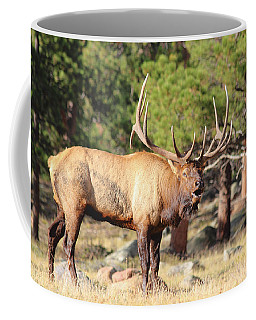 Evening Roundup Coffee Mug