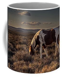 Evening Solitude In Sand Wash Basin Coffee Mug
