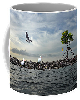 Coffee Mug featuring the photograph Everglade Scene by Dan Friend