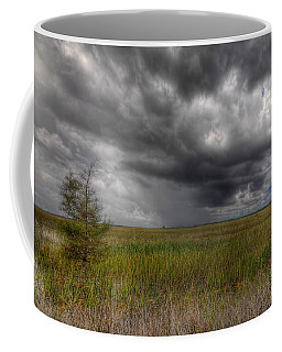 Everglades Storm Coffee Mug