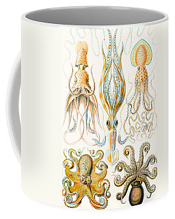 Examples Of Various Cephalopods Coffee Mug