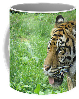 Coffee Mug featuring the photograph Eye Of The Tiger by Lingfai Leung
