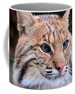 Eyes Of A Lynx Coffee Mug by Rosalie Scanlon