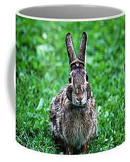 Coffee Mug featuring the photograph Eyes Wide Open by Trina  Ansel