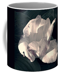Coffee Mug featuring the photograph Faded Beauty by Photographic Arts And Design Studio