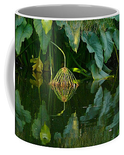 Coffee Mug featuring the photograph Fairy Pond by Evelyn Tambour
