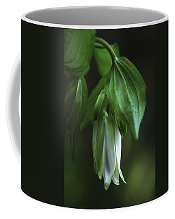 Coffee Mug featuring the photograph Fairybells Of The Forest by Betty Depee