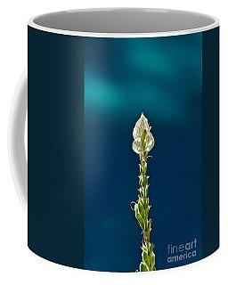 Faith Is Peace Coffee Mug