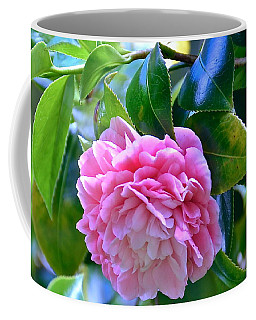 Faithfulness And Longevity Double Pink Cameilla Coffee Mug