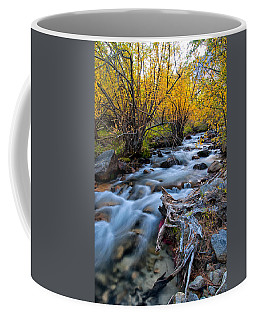 Fall At Big Pine Creek Coffee Mug