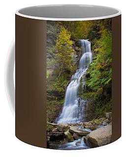 Fall At Cathedral Falls Coffee Mug