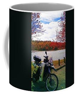 Fall At Fern Clyffe Coffee Mug