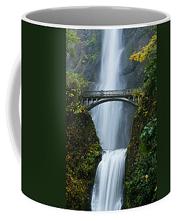 Fall At Multnomah Falls Coffee Mug