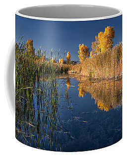 Fall At The Canal Coffee Mug