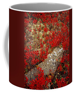 Fall Blueberries And Moss Coffee Mug