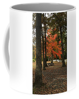 Fall Brings Changes  Coffee Mug