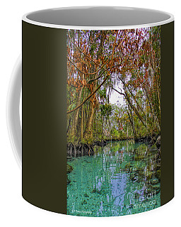 Fall Colors Along Three Sisters Spring Run Coffee Mug