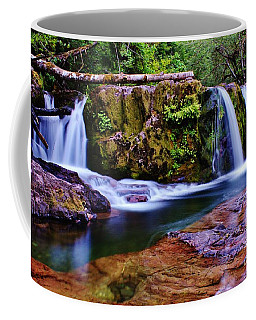 Fall Creek Oregon 3 Coffee Mug