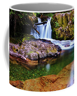 Fall Creek Oregon Coffee Mug