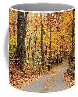 Coffee Mug featuring the photograph Fall Drive by Geraldine DeBoer