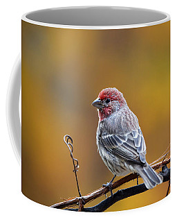 Fall Finch Coffee Mug