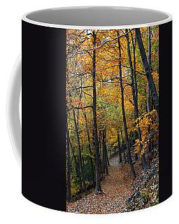 Fall Foliage Colors 03 Coffee Mug