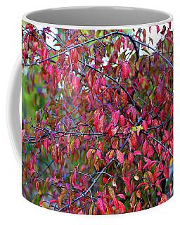 Fall Foliage Colors 05 Coffee Mug