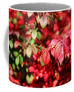 Fall Foliage Colors 10 Coffee Mug