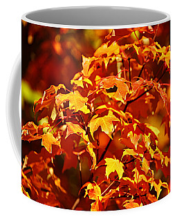 Fall Foliage Colors 14 Coffee Mug