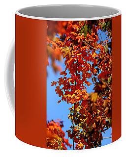 Fall Foliage Colors 15 Coffee Mug