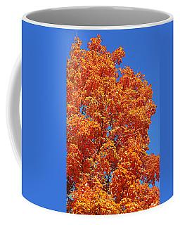 Fall Foliage Colors 18 Coffee Mug