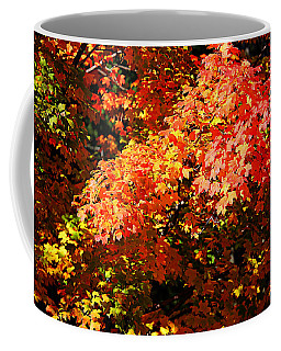 Fall Foliage Colors 21 Coffee Mug