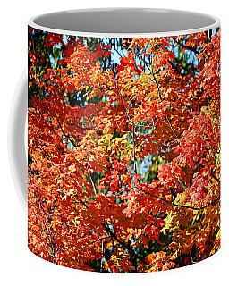 Fall Foliage Colors 22 Coffee Mug