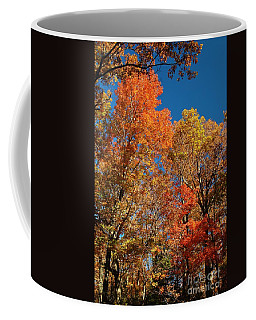 Fall Foliage Coffee Mug by Patrick Shupert