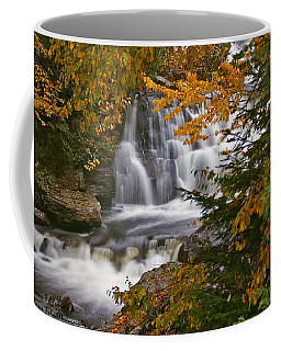 Fall In Fall - Chute Au Rats Coffee Mug