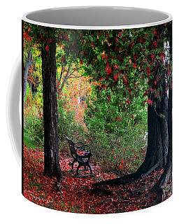 Fall In Henes Park Coffee Mug