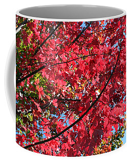 Coffee Mug featuring the photograph Fall In Illinois by Debbie Hart